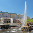 Peterhof — Stock Photo #18196737