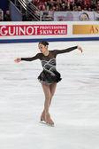 Campionato del mondo sul pattinaggio di figura 2011 — Foto Stock