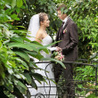 Wedding — Stock Photo #18452499