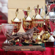 Prize of the Orlovsky Trotter horse breeding — Stock Photo