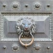 Bronze lion - Foto de Stock