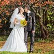 The newly married couple — Stock Photo