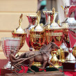 Prize of Orlovsky Trotter horse breeding — Stock Photo #18453745