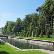Peterhof — Stock Photo #18454405