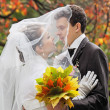 Autumn wedding — Stock Photo #18456165