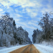 Evening landscape with winter long road through wood - Stock Photo