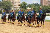 Horse show — Stock Photo