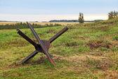 Ouriço checo — Foto Stock