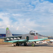 Sukhoi Su-25 (NATO reporting name: &quot;Frogfoot&quot;) - Stock Photo