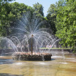 Peterhof — Stock Photo #22160529