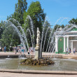 Stock Photo: Peterhof