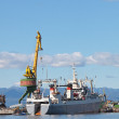 Petropavlovsk-Kamchatsky, ships in port — Stock Photo #22160845