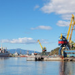 Petropavlovsk-Kamchatsky, the ships are in port — Stock Photo