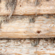 Structure of a wall of a wooden log house — Stock Photo
