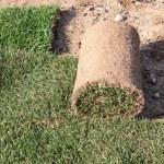 le gazon en rouleaux pour la pose sur la pelouse pour aménagement paysager — Photo