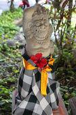 バリの寺院の周りアイドル — ストック写真