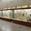 Paleontological Museum - Stock Photo