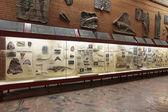 Paleontological Museum — Stock Photo