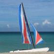 Sailing boat — Stock Photo