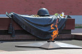 Tomb of the Unknown Soldier with burning flame in Alexander Gard — Stock Photo
