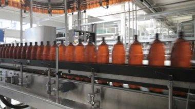 The food industry. Plastic beer bottles moving on conveyor — Stock Video