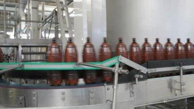 Livsmedelsindustrin. plast ölflaskor flytta på transportband — Stockvideo