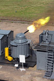 The firing of the ship quick-firing cannon at the landfill, test — Stock Photo
