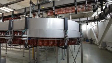 Plastic beer bottles moving on conveyor — Stock Video