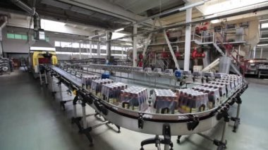Conveyor line with moving packages of finished products — Stock Video