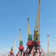 Hoisting cranes — Stock Photo