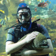 Stock Photo: Diver and Moray