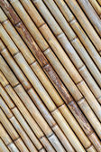The texture of the dried bamboo sticks — Stockfoto
