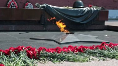 Ternal flame near Tomb of the Unknown Soldier — Stock Video