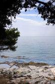 Mediterranean coast — 图库照片