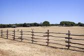 Farma — Stock fotografie