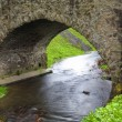Old stone bridge over a small river in spring time — Stock Photo #48312447