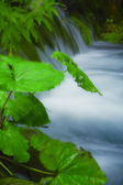Beautiful waterfalls at Plitvice Lakes National Park — Stock Photo