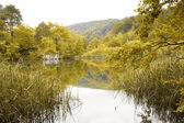 Landscape of a beautiful lake in autumn — Stock Photo