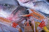 Fresh Adriatic seafood on ice — Stock Photo