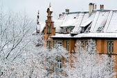 Casas e árvores na neve fresca — Fotografia Stock