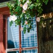 Idyllic Bavarian alpine cottage — Stock Photo