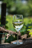 White wine glass on wooden table against vineyard in summer — Stock Photo
