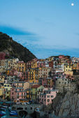 Manarola town at Cinque Terre national park in Italy — Stock Photo