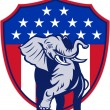 RepublicElephant Mascot USFlag — Stock Vector #12482928