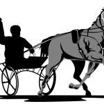 Horse and Jockey Harness Racing — Stock Vector #13801302