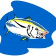 Stock Vector: Yellow Fin TunFish Retro