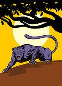 Jaguar Prowling — Stock Vector