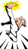 Martial Arts Kung Fu Karate Kick — Stock Vector