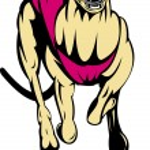 Greyhound dog racing — Stock Vector