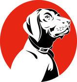 Testa di cane golden retriever labrador — Vettoriale Stock